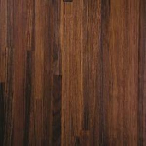 African Black Walnut