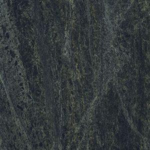 Black Sequoia  PP6369 SCO