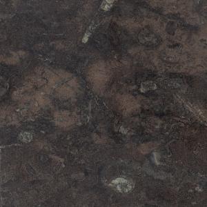 Black Fossilstone  FP3461 Radiance