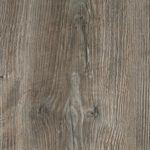 Ponderosa Pine R55004 (R4531) RU
