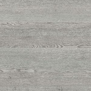 Silvered Oak   Nature